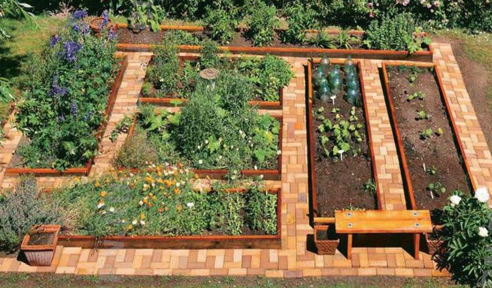 покрыть дорожки в огороде